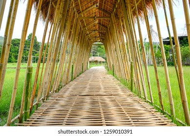 bamboo pathway across rice field in Thailand