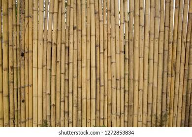 Bamboo Pattern Wall