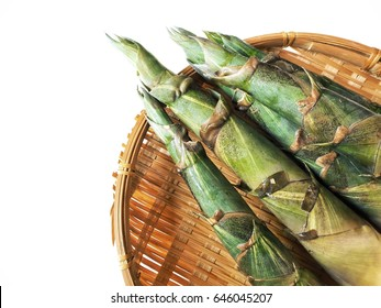 Bamboo shoot isolated