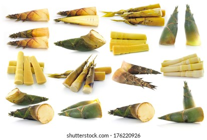 bamboo shoot isolated on white background
