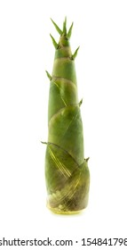 Bamboo shoot on white background.