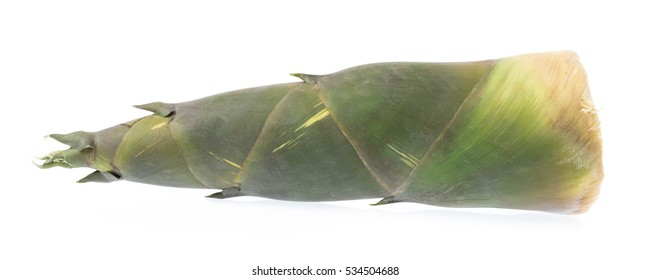 Bamboo shoot vegetables isolated on white background.