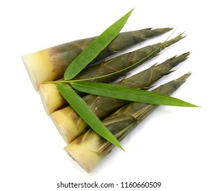 Bamboo shoots with leaf isolated on white background