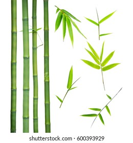 bamboo stalks and leaves isolated on white background