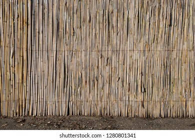 500 Zaun Texture Pictures Royalty Free Images Stock Photos And
