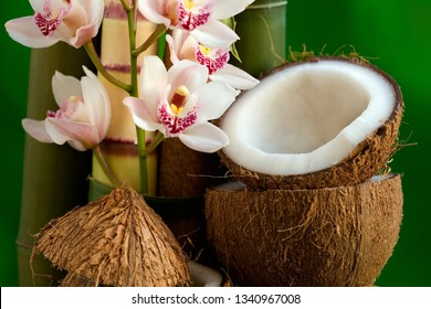 Bamboo trunks, opened coconuts and pink orchids still life. Hawaii, Maui, USA