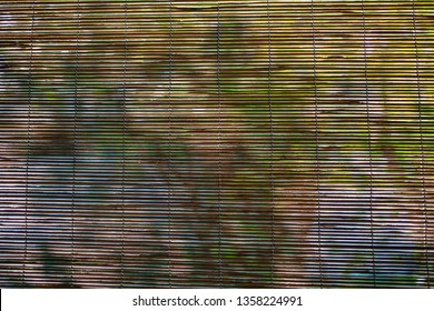 Bamboo wood blind window texture, Light and Shadow trees, Abstract seamless background, Asian decorating home