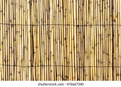 Bambu Fence Background
