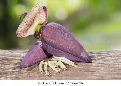 Banana blossom  on a background of nature