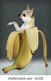 Banana Boy