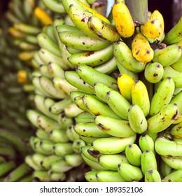 Banana Bunches, Latin America street market, Ecuador, Guayas province