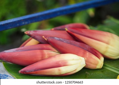 Banana flower buds sell at market