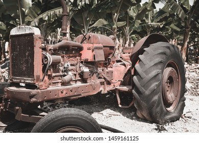 Banana plantation with decommissioning old tractor in Cyprus