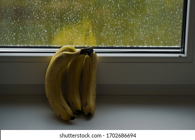 Banana still life in window after rain