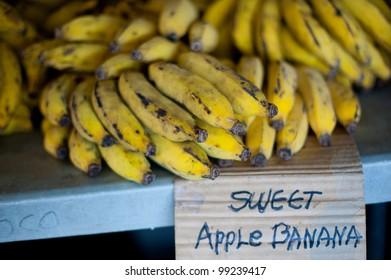 Bananas at the Hilo Farmer's market