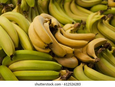 Bananas on a market stall in Harbour Town, Queensland, Australia. Full-frame, Background, Healthy Food