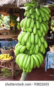 Bananas for sale, Hana Highway, Maui, Hawaii