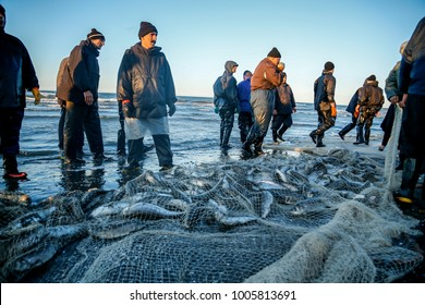 Bandar-e Anzali - Iran - March 2017: fishermen pulling up a net filled with fish