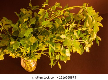 a bandle of parsley in a carafe of water