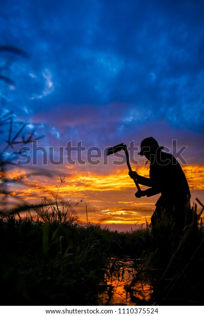 Bandung, West Java / Indonesia -  March 7th, 2016 : A Silhouette of a Man Traditionally Hoeing the Rice Field in the Early Morning Sunrise, Bandung, Indonesia, Asia