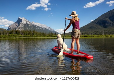 Banff, Alberta, Canada - June 19, 2018:  Adventurous woman on a paddle board with her dog is enjoying the beautiful sunny summer day on the lake.