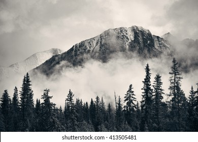 Banff national park foggy mountains and forest in Canada.