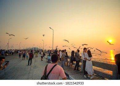 Bang Pu, Samut Prakan Province/ Thailand - February 5th 2017 : Tourists gathered at Bang Pu recreation centre in the evening to see and feed flock of seagulls.