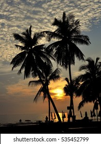 Bang Saen, Thailand - January 8, 2014:  Silhouetted coconut palm trees at Bang Saen beach frame a setting sun over the ocean