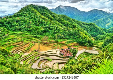 Bangaan Rice Terraces - Ifugao, Luzon Island, the Philippines