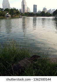 Bangkok / Thailand - April, 3, 2019: scene in Lumpini Park. Monitor lizard about to enter one of the ponds. Skyscrapers in the background (reflecting in the water). Early afternoon. Vertical.