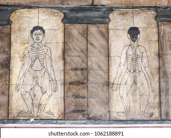 Bangkok, Thailand - Circa January 2018: Ancient art murals depicting the sen lines (energy lines) used for Traditional Thai Massage at Wat Pho (Buddhist temple)