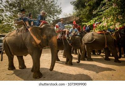 Bangkok, Thailand - December 14th, 2012: Group of tourists on elephants about to take a ride through the forest outside the Elephant Village