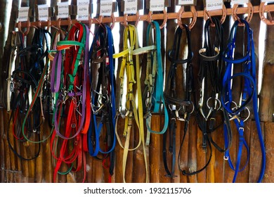 BANGKOK, THAILAND - FEBRUARY 1, 2021 : Leather horse bridles and bits hanging on wood wall of stable.