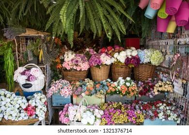 BANGKOK, THAILAND - February 23, 2019 : Flower shop selling variety of flowers at Chatuchak weekend market, Bangkok Thailand.