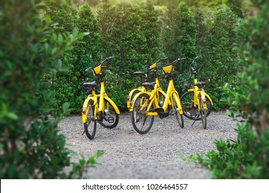 BANGKOK, THAILAND - February 3, 2018 : Yellow OFO bicycle in the park. from Chinese bike sharing company parked dockless in thailand ready for hire by user of smartphone app.