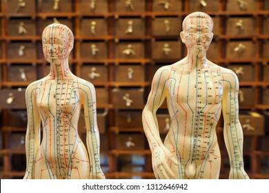 Imagenes Fotos De Stock Y Vectores Sobre Estudios Medicos