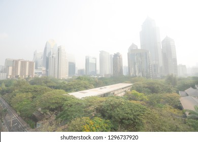 BANGKOK, THAILAND JAN 21, 2019 ; Bangkok skycrapper office building gray out covered by PM 2.5 dust with green tree in public park, air pollution with particle of dust crisis.