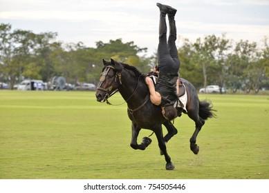 Bangkok, Thailand - January 16, 2016 : Riding stunt horse.