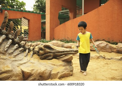 Bangkok, Thailand - January 8, 2017: Thai boy learning about Paleontology in government sponsor public park, Children's discovery museum, located next to Chatuchak park.