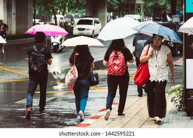 Bangkok, Thailand - July 5, 2019 : Unidentified people holding the umbrella, monsoon season, raining in Bangkok, Thailand.
