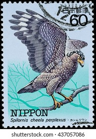 "BANGKOK, THAILAND - JUNE 12, 2016: A stamp printed in Japan shows a Spilornis cheela perplexus eagle bird, series ""Endangered Native Bird"", circa 1984."
