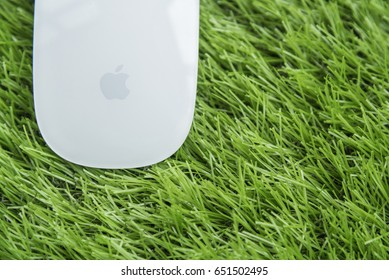 BANGKOK, THAILAND - June 1,2017: Photo of Magic Mouse on green grass background- illustrative editorial