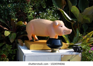 BANGKOK, THAILAND - MARCH 21, 2012 - Sculpture of a pig and a bowl for donations in the Buddhist temple Wat Saket (Golden Mounty), Bangkok, Thailand