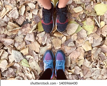 BANGKOK, THAILAND. MAY 20, 2019: the runners wear  stability running shoes ADIDAS Ultraboost ST and Nike Odyssey React 2, standing on the dry leaves.