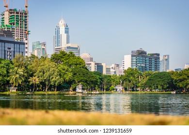 BANGKOK, THAILAND - NOVEMBER 2018: Sunny day in Lumphini Park in Bangkok, Thailand, skyscrapers in the background