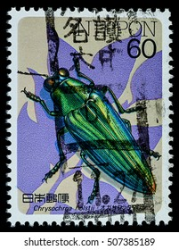"""BANGKOK, THAILAND - OCTOBER 08, 2016: A postage stamp printed in Japan shows chrysochroa holstii metallic wood boring beetles, series """"insects"""", circa 1986."""