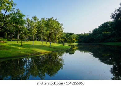 Bangkok, Thailand October 11, 2019 Pond in the garden in morning day with blue sky. Beautiful green park, Public park with green grass field and tree.- Image