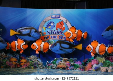 Bangkok, Thailand - September 20, 2016: Sea Life Bangkok Ocean World, the largest aquarium in Southeast Asia, displays hundreds of different species in exhibits.