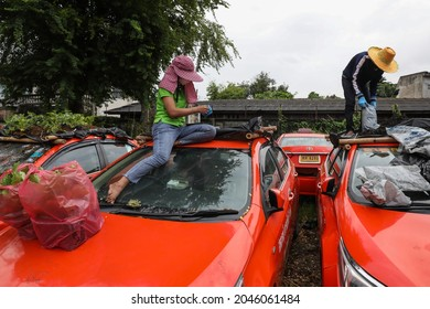 Bangkok, Thailand-Sep 15, 2021: Miniature gardens are seen on the roof of unused taxis due to the business crisis caused by the coronavirus disease (COVID-19) pandemic