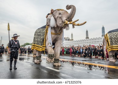 Bangkok,Thailand -November 8,2016 : White elephants and people to pay their respects before Royal Urn at the Grand Palace on rainy day in Bangkok, Thailand.